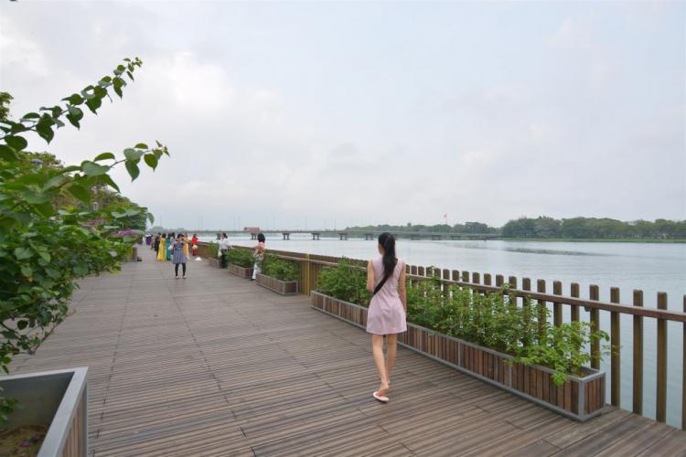 Xuyên Việt: Em đi chữa bệnh Sài Gòn - Thanh Hóa